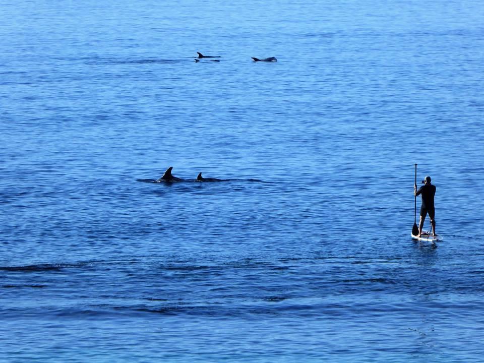 Le tourisme de plongée sous-marine pousse à Lanzarote