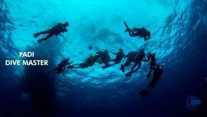 PADI Dive master Lanzarote