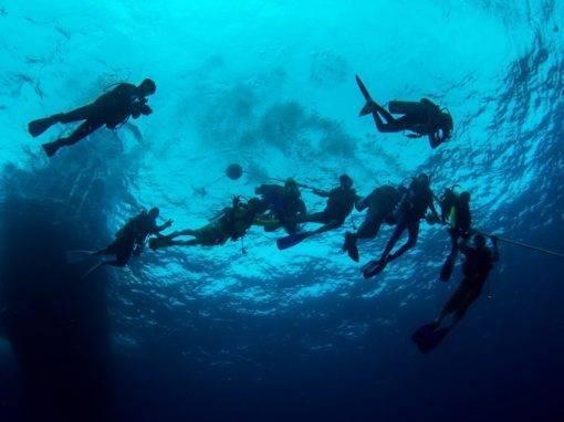 Dive master PADI