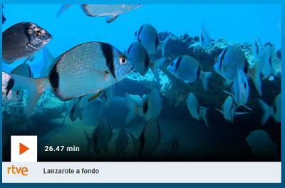 Reportaje de Lanzarote a fondo