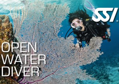 Open water diver SSI