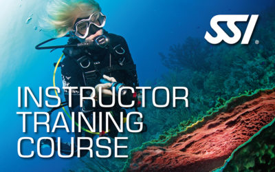 curso de instructor de buceo SSI